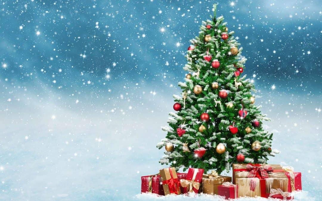 Joyeuses fêtes de fin d'annèe